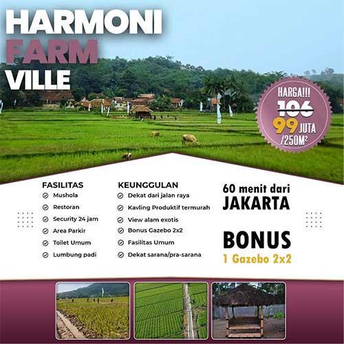 Harmoni Farm Ville 99 Juta 250 Meter - Azamtaproperti.com